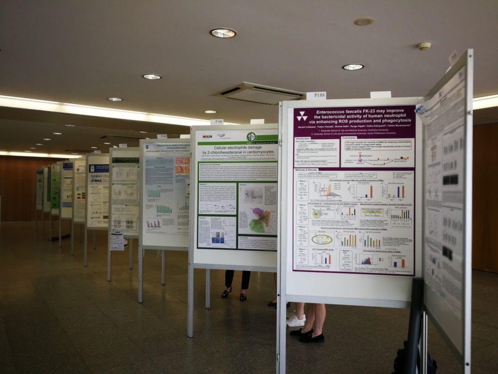 SFRRI 2018 - Apresentação de Posters durante o Evento